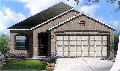 El Paso Single Family Home For Sale: 13668 Garforth Avenue
