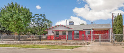 El Paso Single Family Home For Sale: 10501 McCombs Street