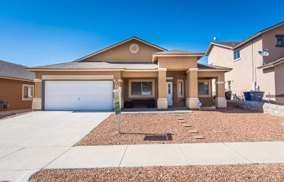 El Paso Single Family Home For Sale: 7089 Century Plant Drive