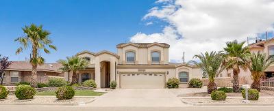 Single Family Home For Sale: 11333 Patricia Avenue