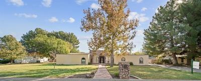 El Paso Single Family Home For Sale: 4812 Portsmouth Boulevard