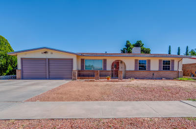 El Paso Single Family Home For Sale: 10824 Frazier Court