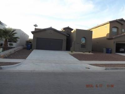 El Paso Single Family Home For Sale: 14829 Harry Flournoy