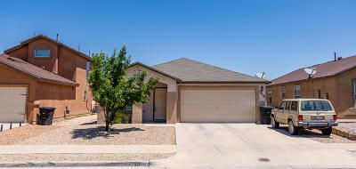 Horizon City Single Family Home For Sale: 13239 Kestrel Avenue