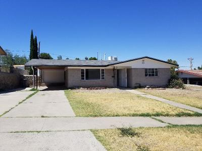 El Paso Single Family Home For Sale: 3621 Volcanic Avenue
