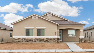 El Paso TX Single Family Home For Sale: $170,450
