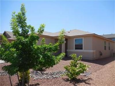 El Paso Rental For Rent: 2213 Glitter Point