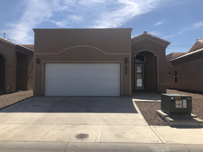 El Paso Single Family Home For Sale: 3656 Grand Bahamas Drive