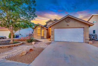 El Paso Single Family Home For Sale: 12505 Gus Salcido Lane