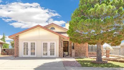El Paso Single Family Home For Sale: 7605 Waterhouse Drive