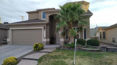 El Paso Single Family Home For Sale: 3169 Diego Aidan Drive
