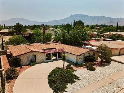 El Paso Single Family Home For Sale: 6369 Los Robles Drive