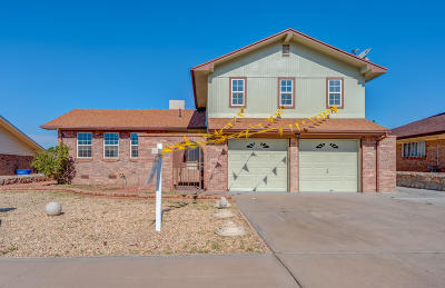 El Paso Single Family Home For Sale: 1625 Bob Smith Drive