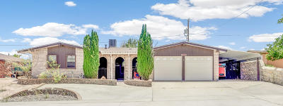 El Paso Single Family Home For Sale: 4616 Tumbleweed Avenue