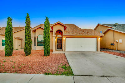 El Paso Single Family Home For Sale: 6220 Spotted Eagle Drive