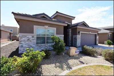 Horizon City Rental For Rent: 1172 Lajitas Place