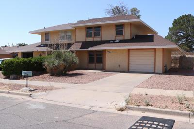 El Paso Condo/Townhouse For Sale: 10680 Cardigan Drive
