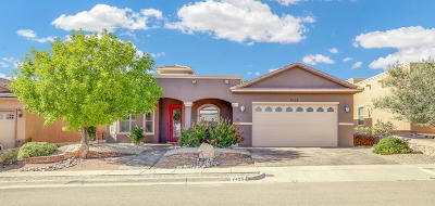 El Paso Single Family Home For Sale: 7425 Gulf Creek Drive