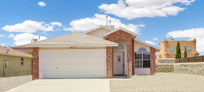 Single Family Home For Sale: 14713 Cactus View Court