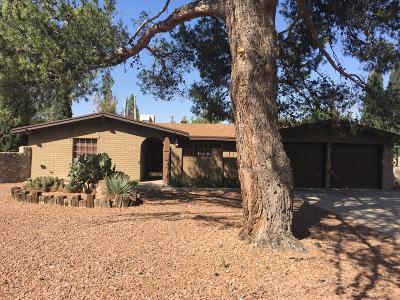 El Paso Single Family Home For Sale: 820 Del Mar Drive