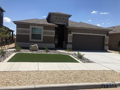 El Paso Single Family Home For Sale: 1735 Breeder Cup Way
