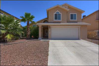 El Paso Single Family Home For Sale: 7287 Sotol Court