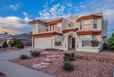 Vista Hills Single Family Home For Sale: 12165 Frank Cordova Circle
