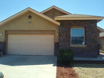 El Paso Single Family Home For Sale: 4141 Tierra Yamila Lane