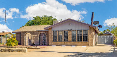 El Paso Single Family Home For Sale: 10428 Cardigan Drive