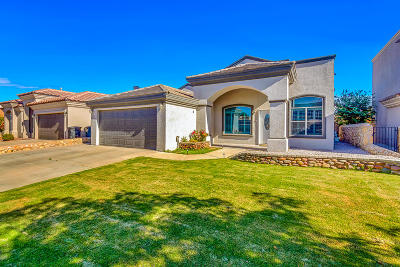 El Paso Single Family Home For Sale: 13784 Paseo De Vida Drive