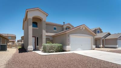 El Paso Single Family Home For Sale: 14201 John Scagno