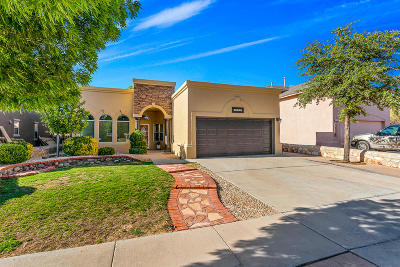 Horizon City Single Family Home For Sale: 13765 Paseo Central Avenue
