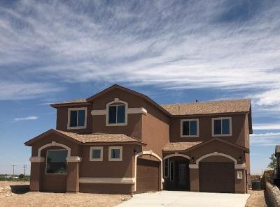 El Paso Single Family Home For Sale: 221 Gonzalo Circle