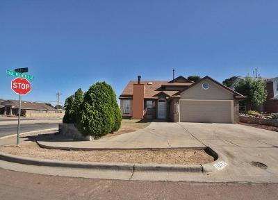 Vista Hills Single Family Home For Sale: 11672 Tait Court
