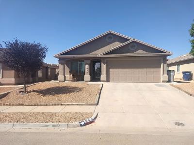 El Paso Single Family Home For Sale: 12956 Enrique Gomez Lane