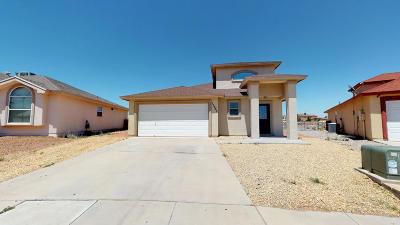 El Paso Single Family Home For Sale: 11753 Autumn Wheat Drive