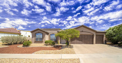 Horizon City Single Family Home For Sale: 13574 Emerald Falls Drive