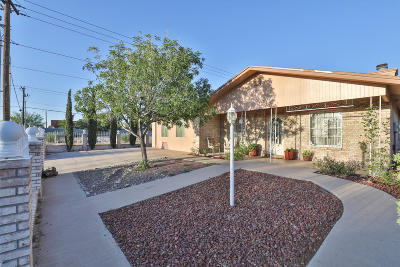 El Paso Single Family Home For Sale: 1570 Gene Torres Drive