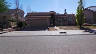 Horizon City Single Family Home For Sale: 477 Horizon Heights Circle