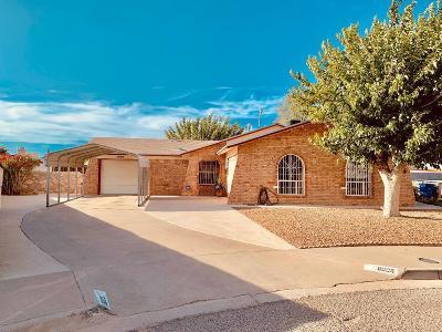 El Paso Single Family Home For Sale: 5005 Greco Court