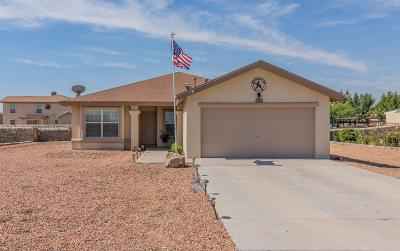 El Paso Single Family Home For Sale: 640 Cancellare Avenue