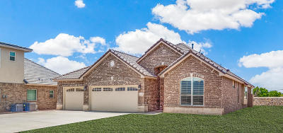 El Paso Single Family Home For Sale: 5809 Valley Spruce Drive