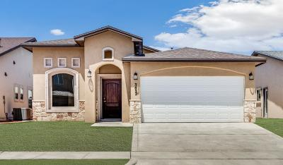 El Paso Single Family Home For Sale: 2824 Tierra Oasis