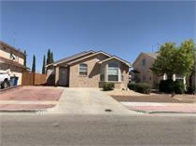 El Paso Rental For Rent: 2256 Tierra Robles Drive