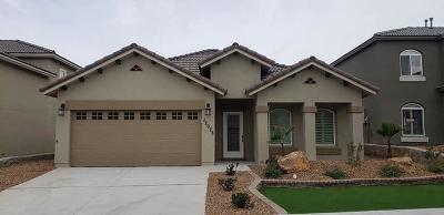El Paso Single Family Home For Sale: 12703 Silver Crown Road