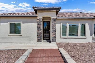 El Paso Single Family Home For Sale: 13470 Everingham Street