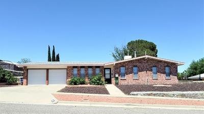 El Paso Single Family Home For Sale: 10721 Vista Alegre Drive