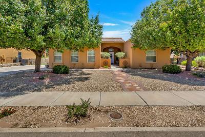El Paso Single Family Home For Sale: 709 Al Smith Lane