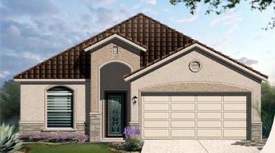 Single Family Home For Sale: 14233 Peyton Edwards Avenue