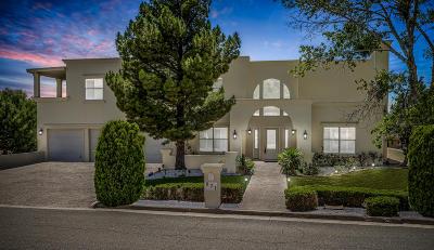 El Paso Single Family Home For Sale: 871 Via Alegre Lane